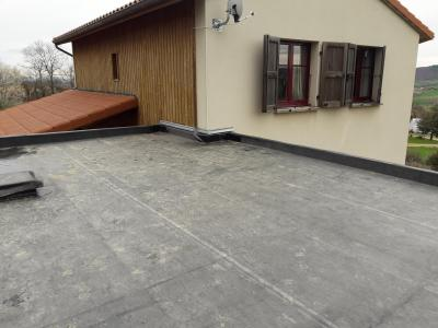 toiture terrasse végétalisable